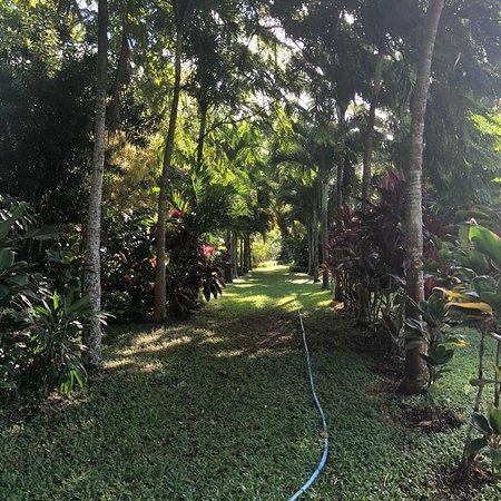 Maire Nui Botanical Gardens Photo