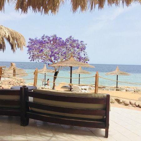 Royal Grand Sharm Hotel照片