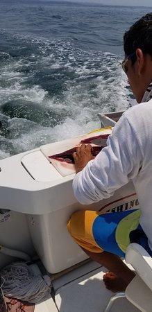 Puerto Vallarta Fishing: Manny filleting an Aku