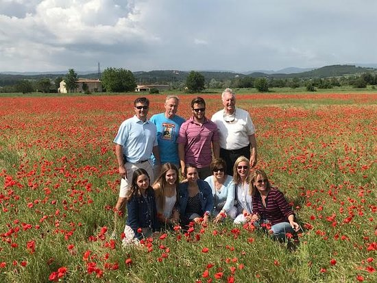 One Day in Provence - Day Tours: One Day in Provence private tour...