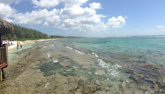 Bodden Town, Grand Cayman: Vue de la plage
