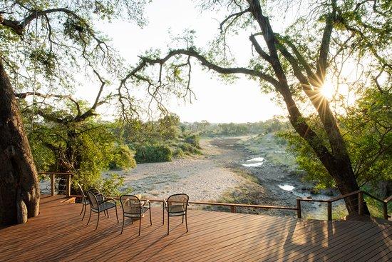 Nyala Safaris: Deck