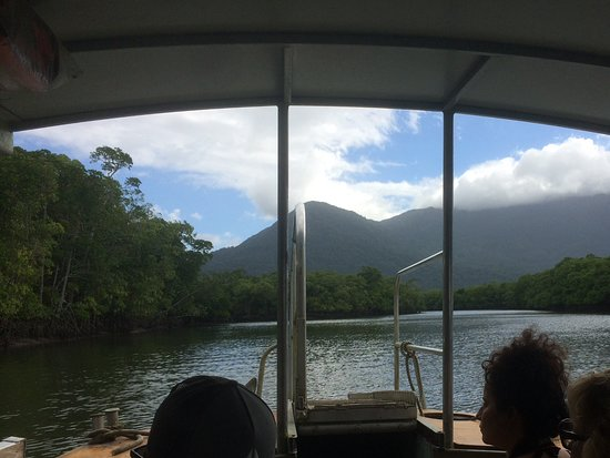 BTS Daintree : On the crocodile spotting section of the tour