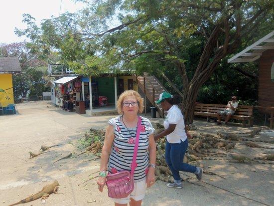Arch's Iguana & Marine Park: LA ENTRADA GRANJA