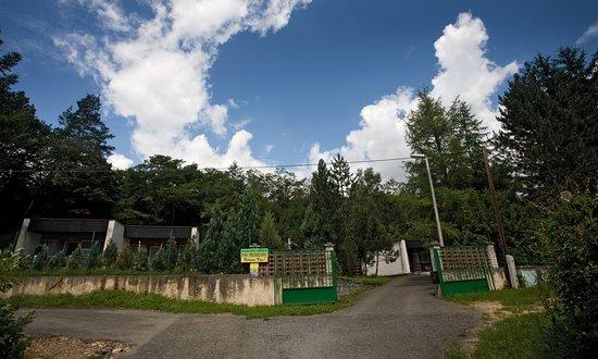 Vranov nad Dyji Photo