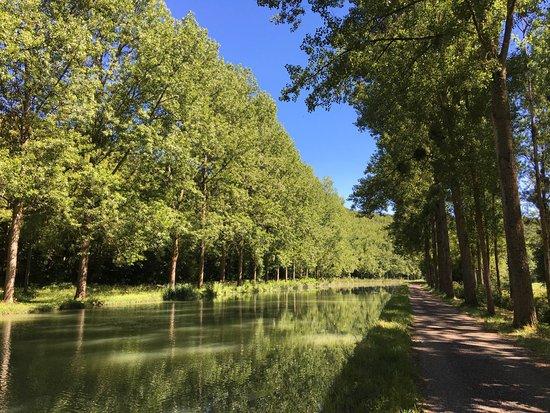 Veli Bourgogne: Venez découvrir les magnifiques paysages de Bourgogne à vélo