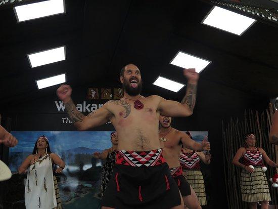 """Pueblo maorí: """"Maori-Show"""""""