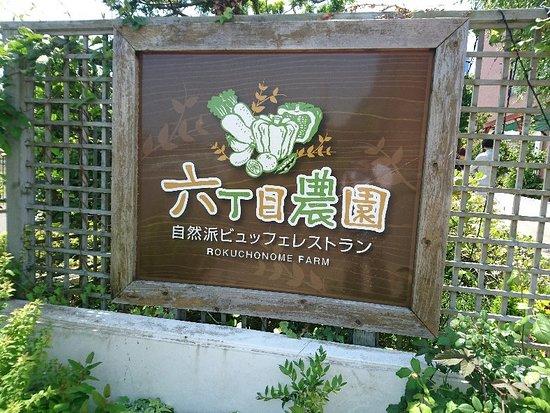 Shinsen Yasai Shizenha Buffet Restaurant 6-Chome Noen Nakayama