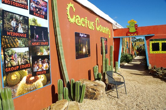 Cactus Country - May 2018 - The Entrance