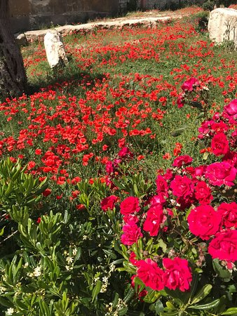 Monterosso Almo, Italy: paesaggio 3