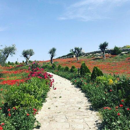 Monterosso Almo, Italy: paesaggio 4