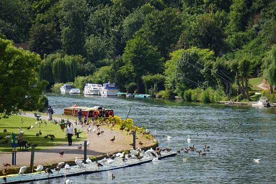 River Thames at Reading by Caversham Bridge
