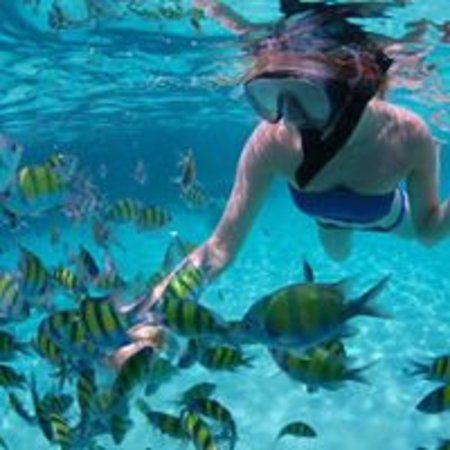 Snorkel Tour Phuket Travel Shop