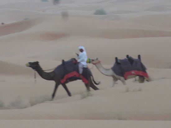 Dubai Safaris Tour: Desert travellers