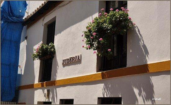 Barrio Santa Cruz: Santa Cruz