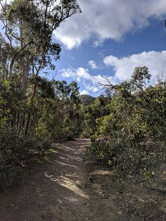 Anakie, Australia: IMG_20180531_113402_large.jpg