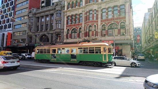环市电车照片