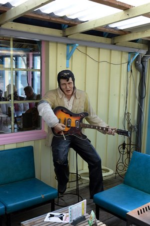 Oosterend, هولندا: Elvis