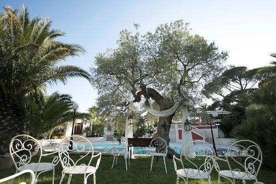 I Giardini dell'Erbavoglio Sala Ricevimenti Sharing:  Rito Civile sul prato con vista piscina...