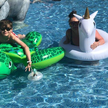 写真Magic Natura Animal, Water Park & Polynesian Lodge Resort枚