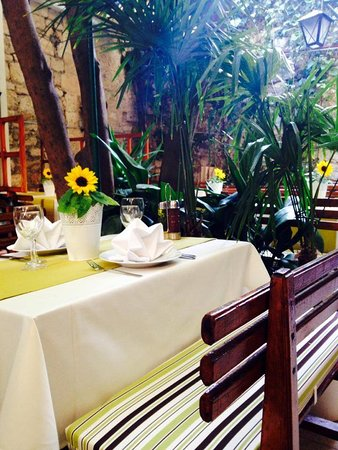 Restaurant Palace Paladini : Garden of the Wild Oranges