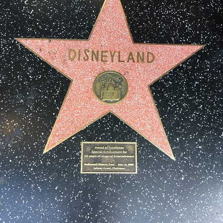 好莱坞林荫大道照片