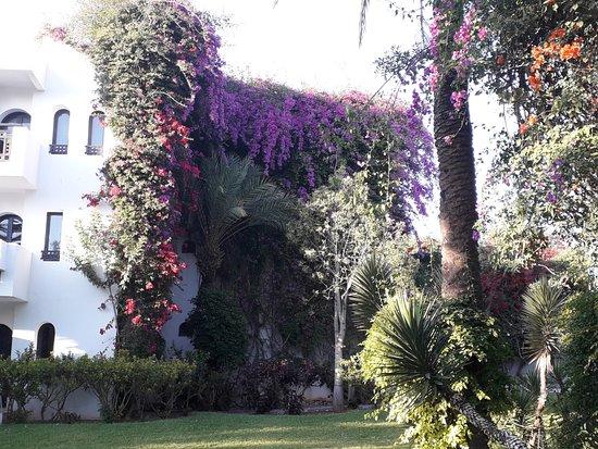 Club Marmara Les Jardins D'Agadir: jardins