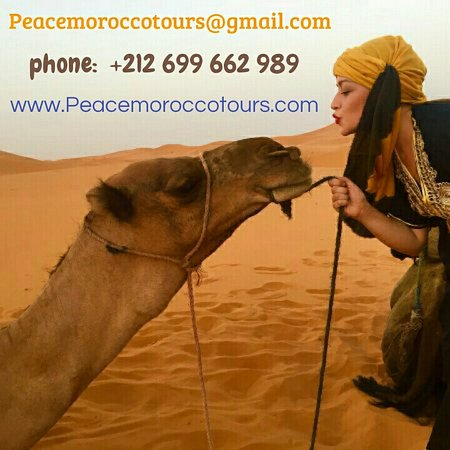 ‪Peace Morocco Tours‬