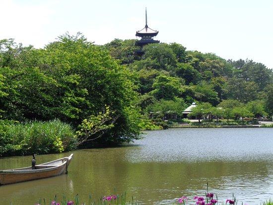 Sankeien Gardens: widok