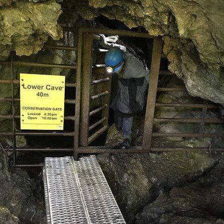 Horne Lake Caves Provincial Park照片