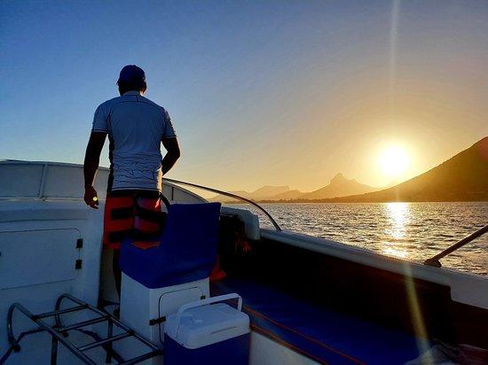 Foto de Dolphin Warrior