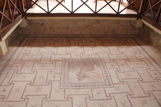 Inside the House of Dionysus - the floor with mosaics