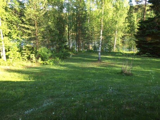 Kyyronkaita: Back garden view