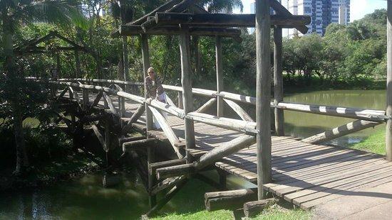 Jardim Botânico de Curitiba – fotografija