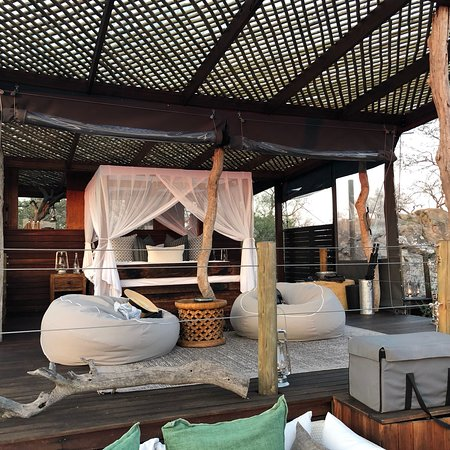 Lion sands ivory lodge updated 2018 reviews sabi sand game lion sands ivory lodge updated 2018 reviews sabi sand game reserve south africa tripadvisor gumiabroncs Image collections