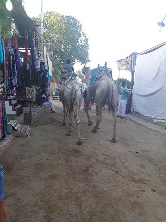 Nubian Village Photo