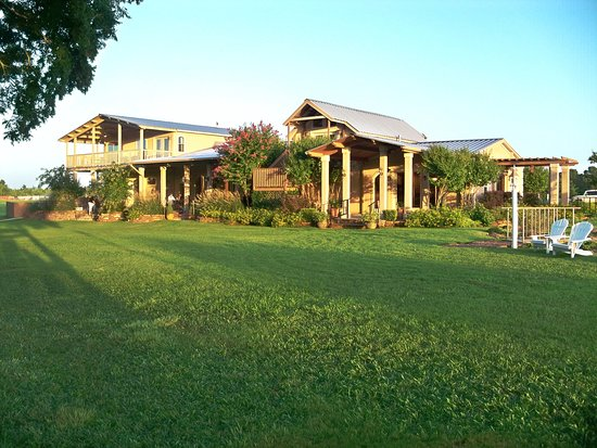 Plantersville, TX: Winery North Lawn