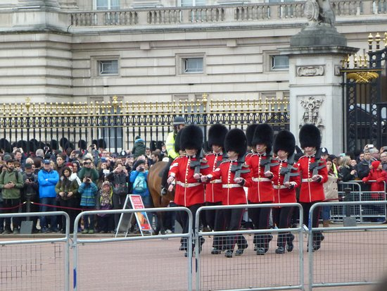 Trooping the Colour : 整齊的士兵