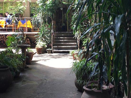 Antica Bar and Restaurant : Beautiful garden