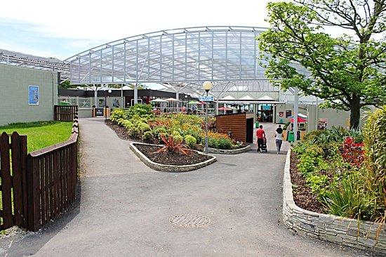 Trabolgan Holiday Village: New Plaza