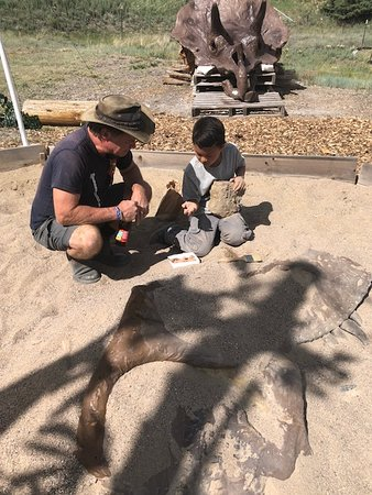 Fossil Posse Adventures: Learning is so easy here!