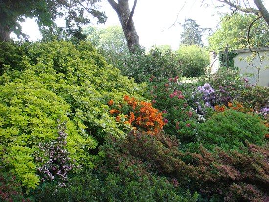 写真Jardin des Plantes枚