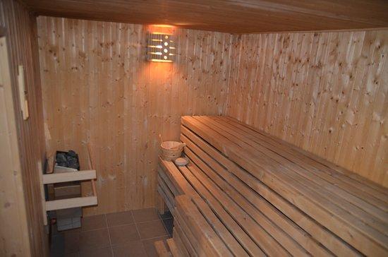 Penzion a Restaurace U Kohoutu: Sauna