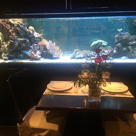 Restaurant Furusato ภาพถ่าย