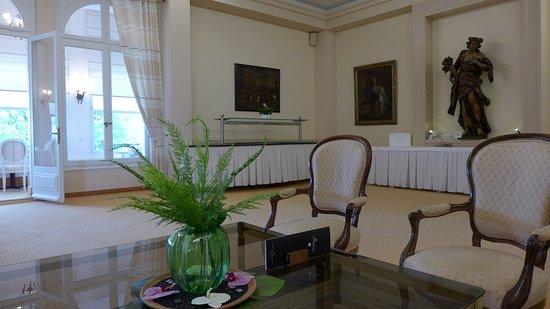 Hotel du Grand Lac Excelsior: отель