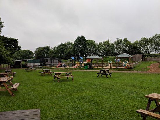 Newbridge Farm Park照片