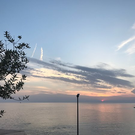 Hrast : Seabass baked in salt in the oven and the view from the terrace!