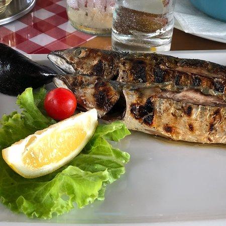 Zaostrog, Croatia: Again: Amazing dinner tonight