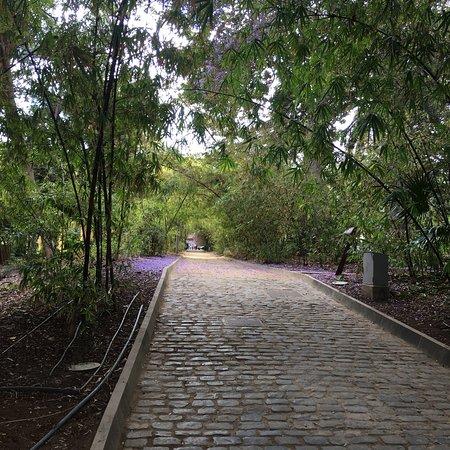 Parque Garcia Sanabria – fotografija