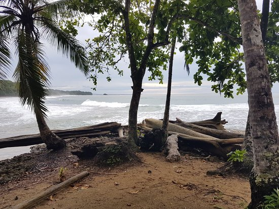 Puerto Viejo Beach照片